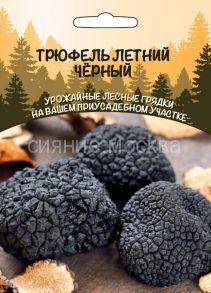 Трюфель летний Черный (Уральский Дачник)