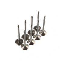 RK07051 * 7701475894(95) * Клапаны для а/м LAR, Renault Logan (8 кл. дв., компл.  8 шт.)