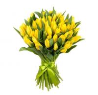 Желтые тюльпаны (от 15 шт)
