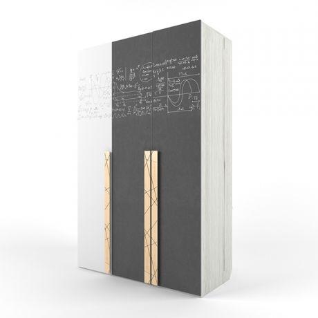 Шкаф 3-х створчатый с фотопечатью Формулы Ньютон Грэй