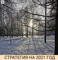 Стратегия на 2021 год (Александр Петров)