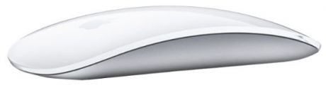 Apple Magic Mouse MB829AM/A