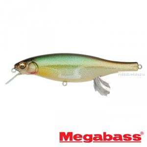 Воблер Megabass Vision 100 Miyabi 105мм / 17,4гр / Заглубление: 0,4 - 0,6 м / цвет: Hakusei Glitter Honmoroko