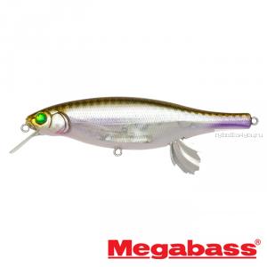 Воблер Megabass Vision 100 Miyabi 105мм / 17,4гр / Заглубление: 0,4 - 0,6 м / цвет: HT ITO Wakasagi