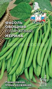 Фасоль овощная (спаржевая) Нерина (СеДек)