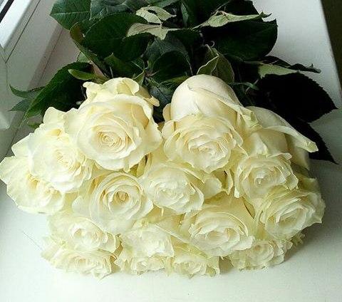Ароматная белая роза от 11 шт