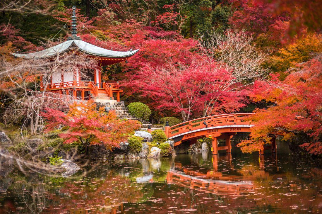 Храм Дайгодзи Япония 10-183