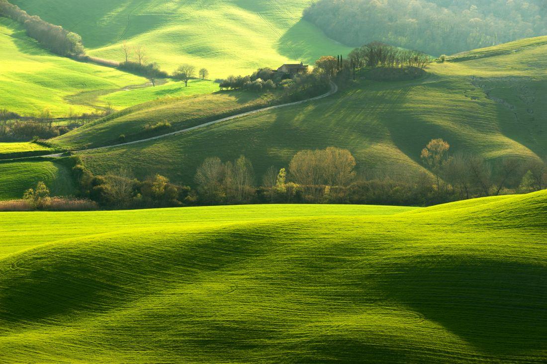 Зеленые холмы 10-287