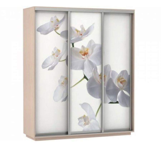Шкаф-купе Экспресс Фото трио Орхидея, цветы белые Ш2400*600