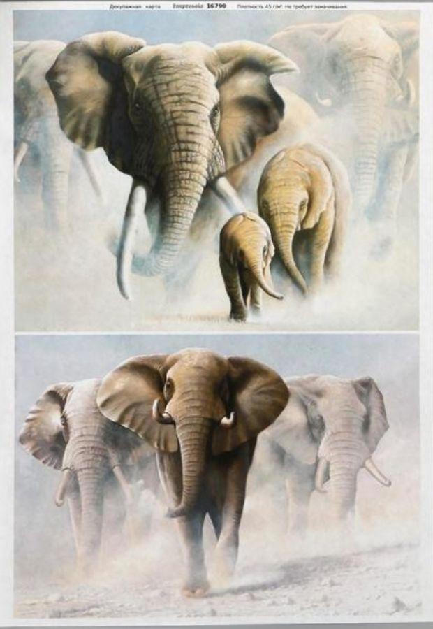 """Декупажная карта Impressio, """"Слоны с бивнями"""", 29,7*21см"""
