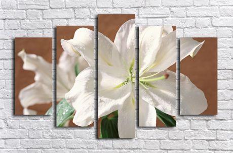 Модульная картина Цветок белой лилии