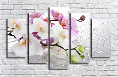 Модульная картина Орхидея на стекле