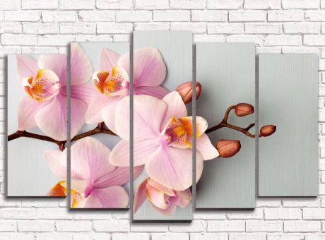 Модульная картина Строгие орхидеи