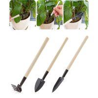 Мини-инвентарь для комнатных растений, 3 предмета