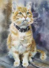 Почтовая открытка Акварельные котики 7
