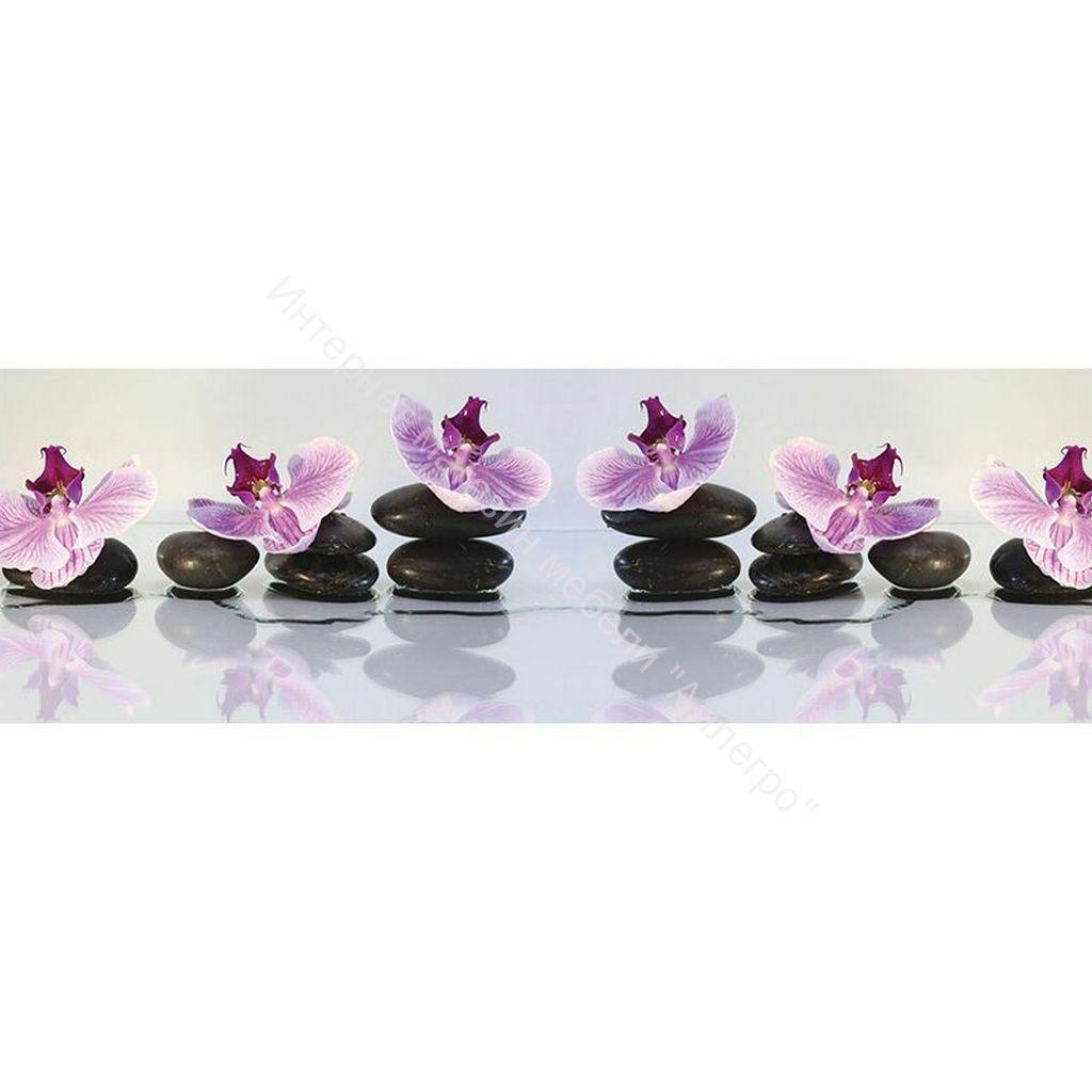 Стеновая панель с фотопечатью Орхидеи 2800