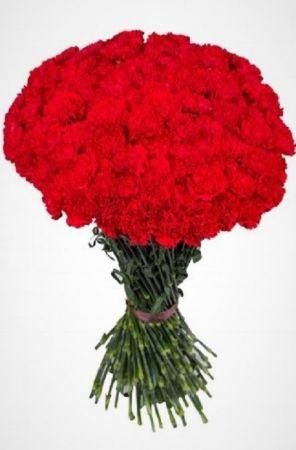 Фото Живые цветы на похороны 50 красных гвоздик