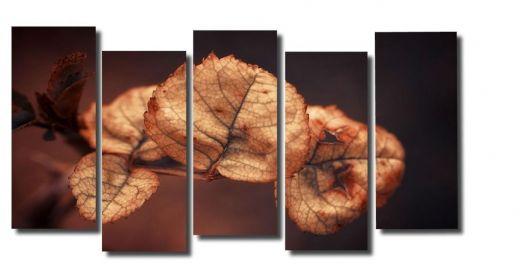 Модульная картина Макро листья