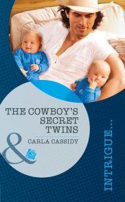The Cowboy's Secret Twins