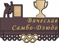 Медальница самбо-дзюдо с полкой из дерева на заказ