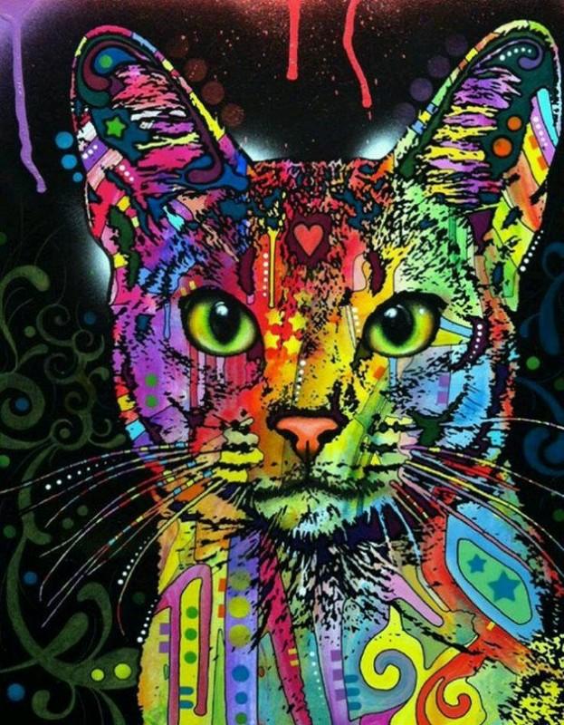 """""""Цветной кот"""" живопись на холсте 40х50см"""