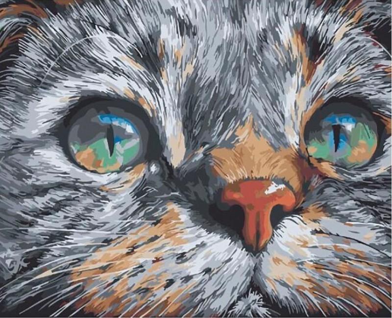 """""""Взгляд кошки"""" живопись на холсте 40х50см"""