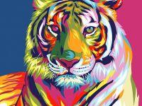 """""""Радужный тигр"""" живопись на холсте 30х40см"""