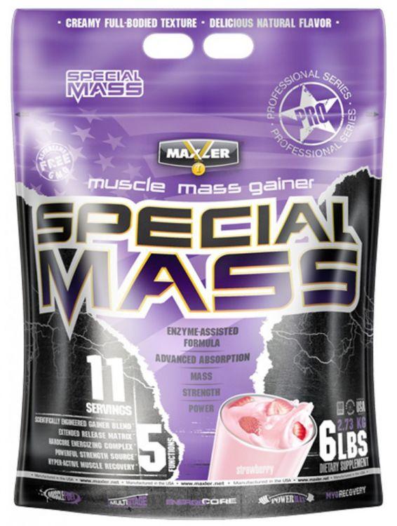 Special Mass Gainer от Maxler 2700 гр 6 lb