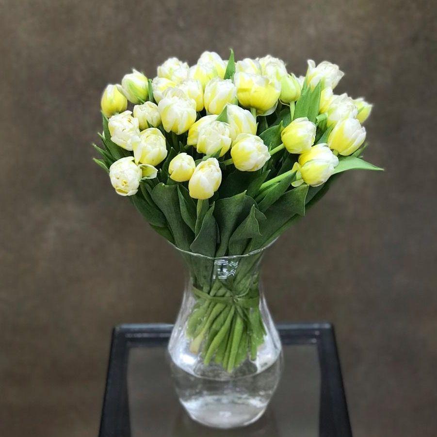Тюльпаны бело-желтые