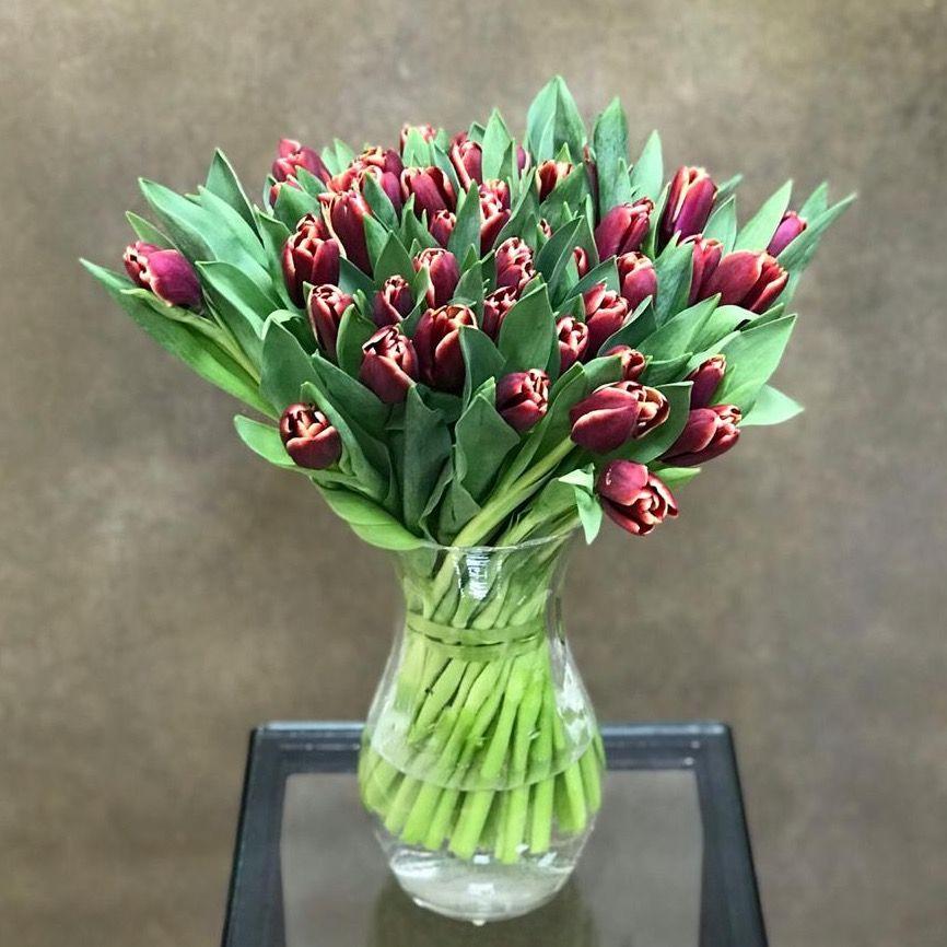 Тюльпаны бархатные