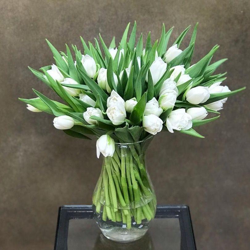 Тюльпаны белоснежные