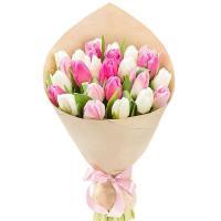 Тюльпаны пионовидные 25 шт